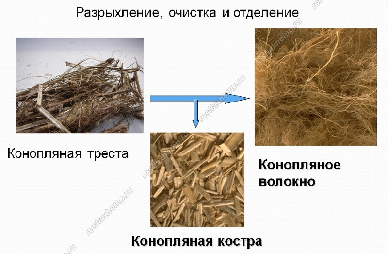 Технологии по переработки конопли купить семена конопляные белая вдова